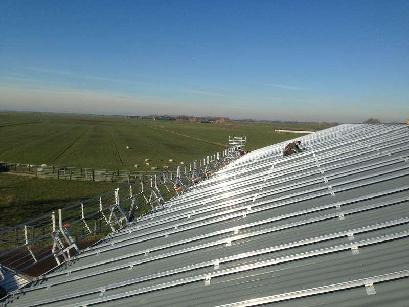 Koeien krijgen zonnedak met 278 zonnepanelen